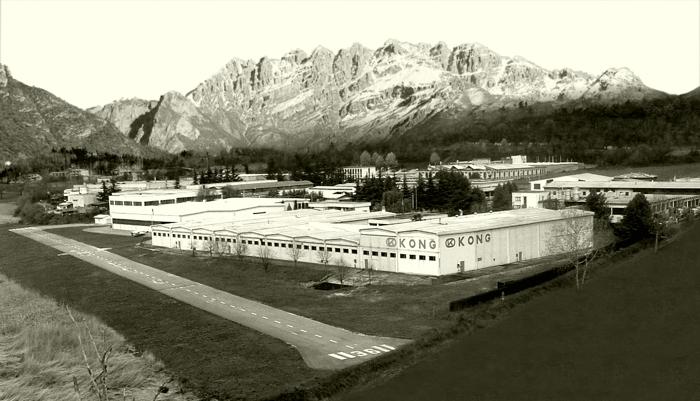 Завод компании Kong